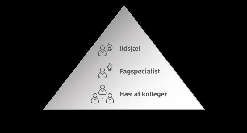 Model 7: Typer af digitale medarbejderambassadører